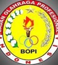 BOPI logo