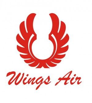 Logo Wings Air