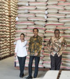 presiden jokowi gudang beras