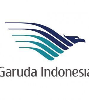 Garuda Indonesia logo ok