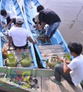 LPG nelayan