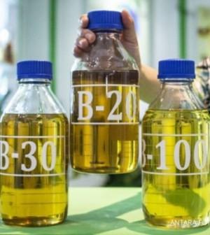 Sampel BBM B-20, B-30 dan B-100